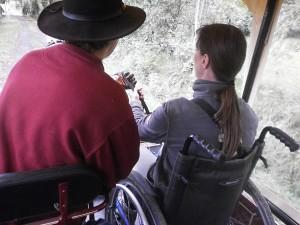 calèche adaptée fauteuil roulant